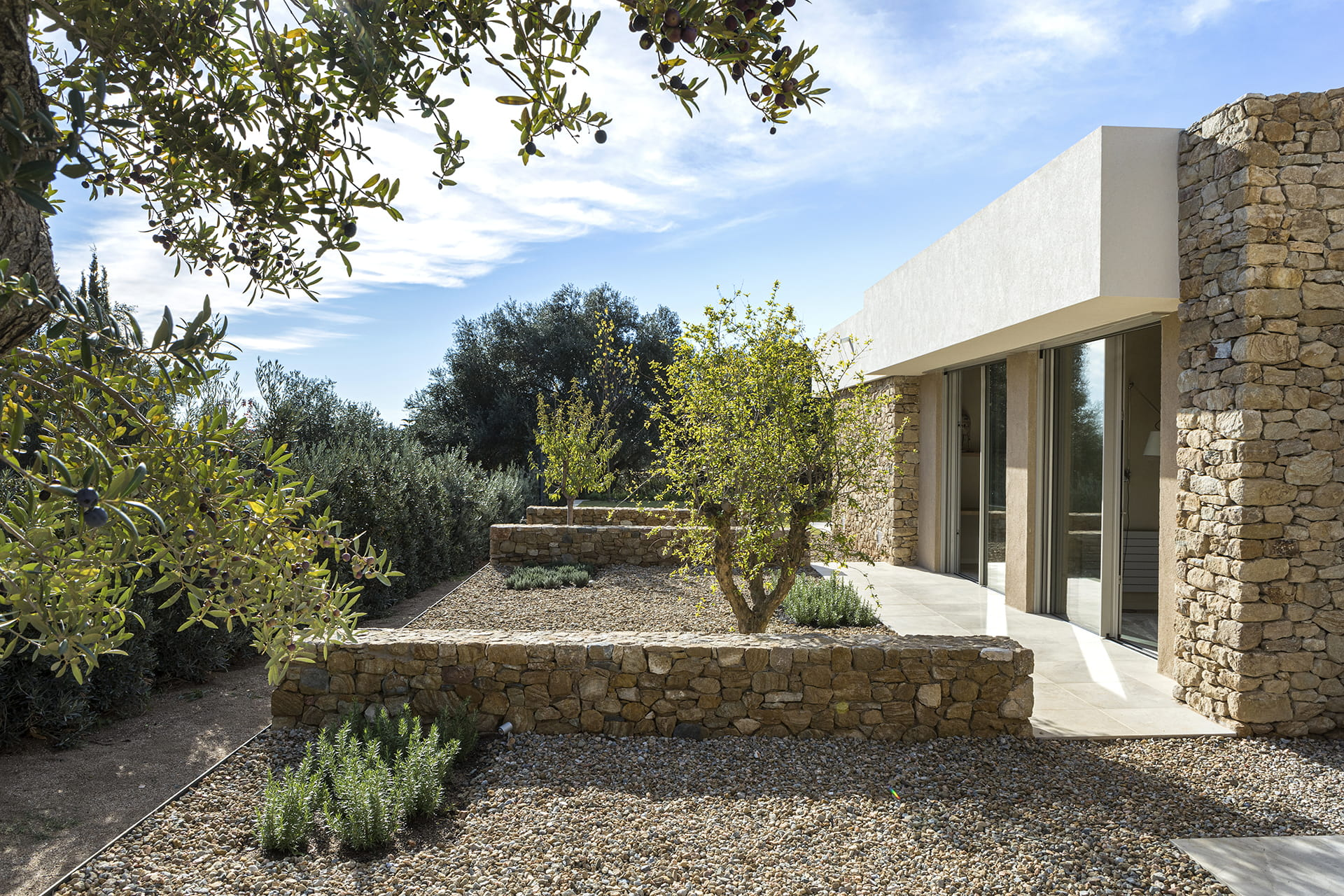 Outdoor contemplative courtyard with stone and vegetation